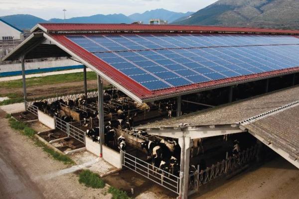 INGSTUDIO Ingegneria - Fotovoltaico 6 - Agricoltura